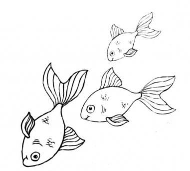 41 Koleksi Gambar Dekoratif Hewan Ikan HD Terbaru